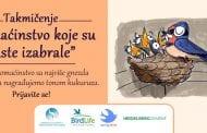 """Takmičenje """"Domaćinstvo koje su laste izabrale"""": Tona kukuruza za domaćinstvo s najviše gneza seoskih lasta"""